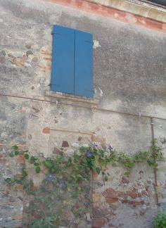 Finestra con clematide a Castellaro Lagusello (Mantova)