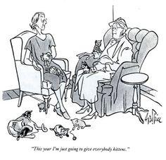 Julie Zickefoose on Blogspot: Happy National Feral Cat Day!