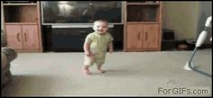 GIFs of Toddlers being knocked out by animals :( ;)