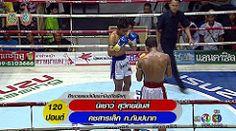 ศกจาวมวยไทยชอง3ลาสด [T.K.O] คชสารเลก ก.กมปนาท VS นเชาว สวทยยมส 27/8/59 Muaythai HD : Liked on YouTube