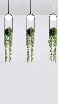 For the latest in modern design, we present to you, the Sky Garden Planter Light. Bring nature indoors and light your home with modern flare with our exquisite Sky Garden Planter Light.The perfect planter for vines thanks to their natural hanging. Hanging Plants, Indoor Plants, Indoor Garden, Potted Plants, Wall Mounted Planters Indoor, Wall Planters, Shade Plants, Sky Garden, Home And Garden
