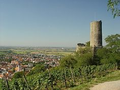 Schauenburg, Schriesheim
