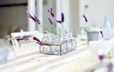 A Beach Cottage - lavender