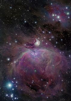M 42 The Orion Nebula   by astrochuck