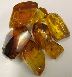 Nice grouping of Dominican Amber