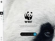 WWF Together 06