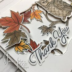 Blended Seasons Bundle & Still Night Bundle Thank You Card by Stesha Bloodhart, Stampin' Hoot! for Challenge Fall Cards, Christmas Cards, Pizza Boxes, Animal Cards, Season Colors, Stampin Up Cards, Scrapbook Pages, Thank You Cards, Card Ideas