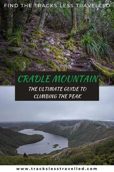 Cradle Mountain is arguably Tasmania's most popular destination. Find out why in this post. In addition, you'll gain all the knowledge you need to conquer to summit. Including how to avoid the crowds. Best Hikes Near Me, Hiking Spots, Hiking Trails, Hikes Near Denver, Best Travel Guides, Above The Clouds, Tasmania, Go Outside, Bouldering