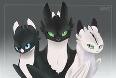 Night Lights Children of Toothless Adults by SnexMy on DeviantArt Disney Drawings, Cute Drawings, Animal Drawings, Httyd Dragons, Cool Dragons, Toothless Drawing, Night Fury Dragon, O Pokemon, How To Train Dragon