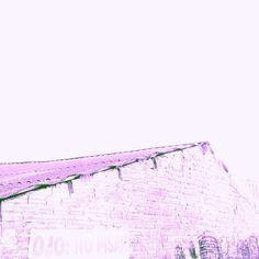 .@simonalimona | #julyphotochallengefpoe #purple