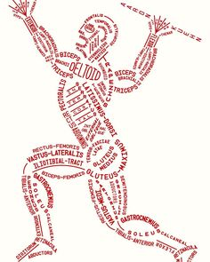How to memorize all muscles in the human body easily An anatomical diagram of the muscular system in a spear throwing pose composed of only the names of the muscles Photo Credit: Aaron Kuehn #doctor #medicine #medical #health#medschool #medstudent #healthcare #art #nurse #futuredoctor #healthyliving #motivation #dentist #pharmacist #wellness #scientist #muscular #university #muscles #doctors #healthy #lifestyle #anatomy #science #research #creative
