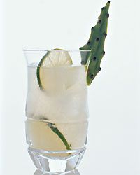Prickly Pear - Tequila Drinks from Food & Wine