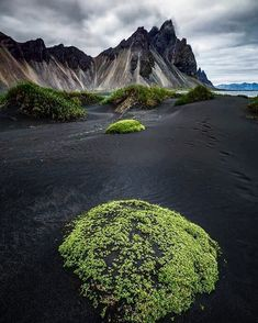 Iceland - #Iceland #travel #trip #traveling #travellike #beautiful #beach #blacksandbeach #moss #nature #mountains #seaside #water #dark… Places To Travel, Places To See, Landscape Photography, Nature Photography, Voyage Europe, All Nature, Iceland Travel, Adventure Is Out There, Dream Vacations