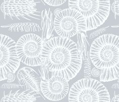 ammonite gray and white fabric by chicca_besso on Spoonflower - custom fabric