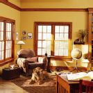 Double Hung Windows  and a Triple Window (double hung windows)
