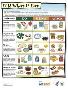 Learn about Go, Slow and Whoa foods and how to eat them!
