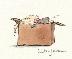 anita jeram mouse in box