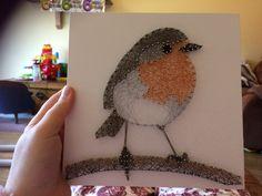 Robin string art by lsd string art