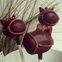 Horse Cake Pops-- chocolate covered marshmallows with Choco chip ears? Chocolate Dipped Marshmallows, Marshmallow Pops, Horse Party, Cowboy Party, Horse Cake Pops, Animal Themed Food, Chocolate Pictures, Incredible Edibles, Fancy Cakes