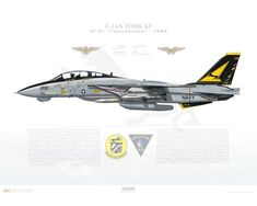 Air Fighter, Fighter Jets, Crossfit Clothes, F-14 Tomcat, Top Gun, Aviation Art, Fighter Aircraft, Us Navy, Military Aircraft