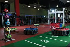 dynamic-equipment-fitness-facility-with-functional-training-accessories.png (852×570)