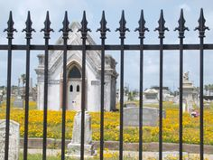 The cemetery of Galveston Island, TX. Sad, beautiful place. In the 1800s when Galveston was a major port, around half of the population of the island died every summer from various diseases. The wealthiest citizens had second homes on the mainland where they would go when the island experienced outbreaks of things like malaria and yellow fever.