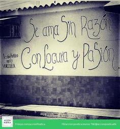 Acción poética Venezuela