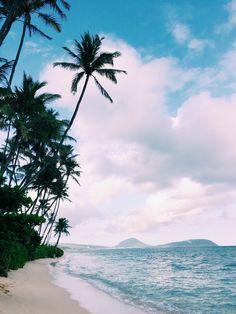 Hues of blues & palm tree views.