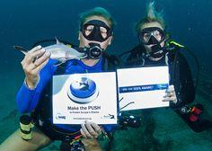 Nikole Ordway - Force-E Scuba Centers in South Florida, USA #SharkAlliance #MakethePush