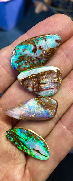 Some nice Opalized Wood I just finished...   Bill Kasso