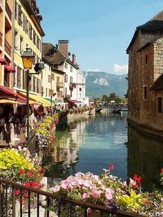 Annecy, France Been here in the winter and it was still just as beautiful although the flowers wernt in bloom