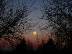 """AccuFan #Weather Photo of the Day: Moonrise in Ohio 2/2 by """"A.K.Entingh""""   #photooftheday"""
