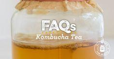 The 30+ Most Common Questions About Kombucha Tea | Kombucha FAQ
