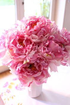 Pink peonies *•. ❁.•*❥●♆● ❁ ڿڰۣ❁ ஜℓvஜ♡❃∘✤ ॐ♥..⭐..▾๑ ♡༺✿ ♡·✳︎· ❀‿ ❀♥❃.~*~. MON 14th MAR 2016!!!.~*~.❃∘❃ ✤ॐ ❦♥..⭐.♢∘❃♦♡❊** Have a Nice Day! **❊ღ༺✿♡^^❥•*`*•❥ ♥♫ La-la-la Bonne vie ♪ ♥❁●♆●○○○