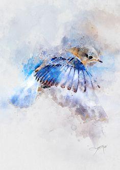 Watercolor Sketchbook, Watercolor Bird, Watercolor Paintings, Watercolors, One Stroke Painting, Painting & Drawing, Wildlife Paintings, Bird Prints, Pictures To Paint