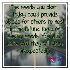Seeds of Legacy...http://25dollarlegacy.com/land.php?id=14&ref=renardgr7 #entreprenur #business #faith #success #leadership