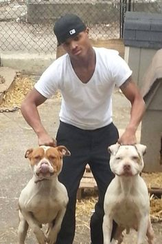 Baltimore dog fighter in court soon! Demand FULL prosecution! | YouSignAnimals.org
