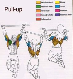 Pull-ups can SAVE YOUR LIFE!! http://www.operationconquer.com/82~Why-Aren-t-You-Doing-Pull-Ups--