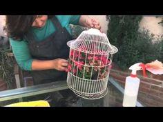 Maceta dentro de una jaula con Happy Pot - YouTube