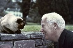 Charlie Chaplin on the grounds of his home in Vevey, Switzerland, admiring one of the family Siamese cats in 1955. While he had his greatest success with a dog by his side, Charlie Chaplin had a preference for cats…they appeared in many of his...