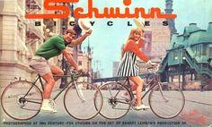 schwinn bicycles - Google Search