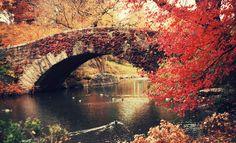 autumn_in_new_york_city