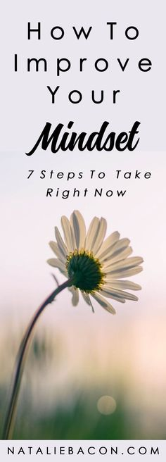 How To Improve Your Mindset (7 Steps To Take Right Now) #mindset #lifehacks #selfimprovement #nataliebacon