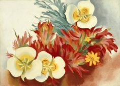 Georgia O'Keeffe. Mariposa Lilies and Indian Paintbrush, 1941