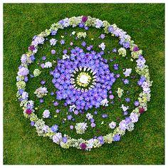 Flower Mandala by Whitney Krueger with delphinium, foxglove, hydrangea, verbena, begonia, snapdragon