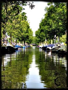 Monday: on my way to the train station, I pass one of Haarlem's beautiful water landscapes. In my humble opinion, a city is not a city without decent canals and a nice market. Haarlem definitely has both. #pinyourcity