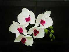 How To Make Phalaenopsis Orchid From Crepe Paper - Craft Tutorial - YouTube