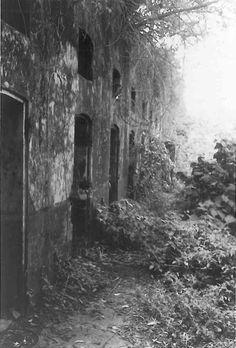 Prisão de Saint Laurent du Maroni, na Guiana Francesa, foto de Patti Smith, uma das artistas da coletiva Dark Paradise, no Roesler Hotel (Foto: Divulgação)
