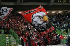 Benfica Supporters (away at Sporting Lisbon Stadium) Lisbon, Times Square, The Unit, Sports, Queen, Football, Club, World, Lets Go