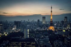 Tokyo skyline during evening | by jayco1983